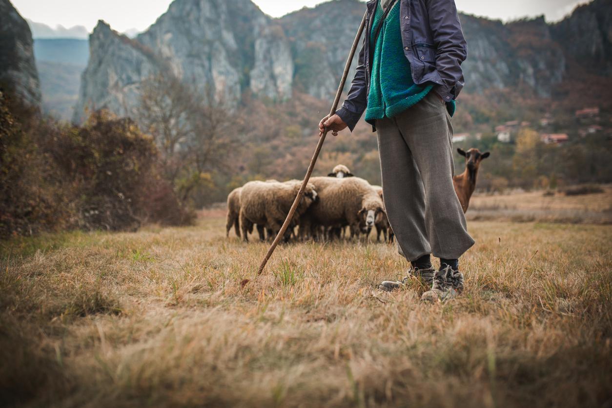 Jesus: the Good Shepherd, Part 1